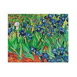 Vincent van Gogh - Irises borduurstramien